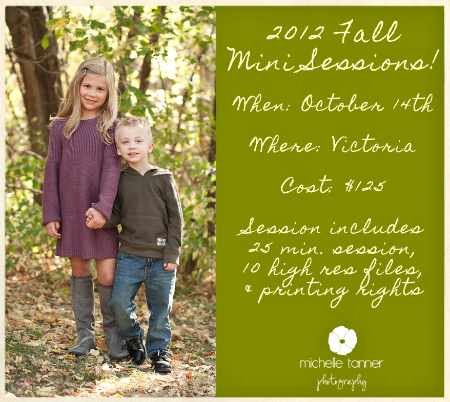 2012 Fall Mini Sessions Minneapolis Minnesota Family Photographer Minneapolis Family Photographer Announces 2012 Fall Mini Sessions